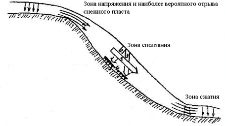 Рис. 3. Силы, действующие в снежном пласте: 1 - составляющая силы тяжести, стремящаяся сдвинуть пласт снега, 2 - составляющая силы тяжести, перпендикулярная склону, 3 - сила тяжести, 4 - силы сцепления и трения (сопротивления сдвигу)