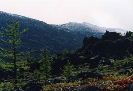 Рис. 9. Заповедник «Денежкин Камень» (фото Казакова Р.А.)