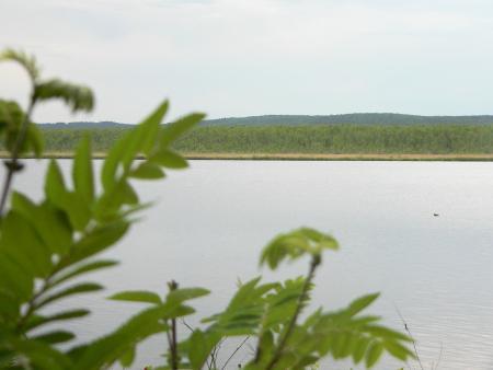 Рис. 11. Верх-Исетский пруд (фото Семеновой Н.А.)
