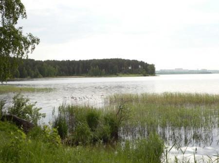 Рис. 28. Полуостров Гамаюн (фото Семеновой Н.А.)