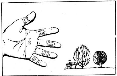 Рис. 2. Рука и пальцы в «тысячных»