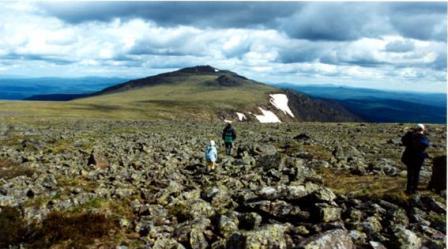 Рис. 58. Конжаковское плато (фото Слепухина А.В. и Бердюгиной Н.)